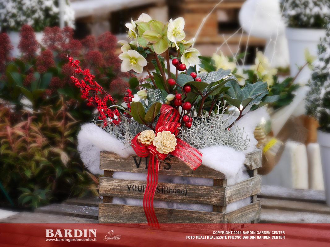 Mostra Degli Ellebori Bardin Garden Store
